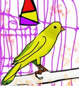 dibujos-colorear-pajaros-canario-p-copia